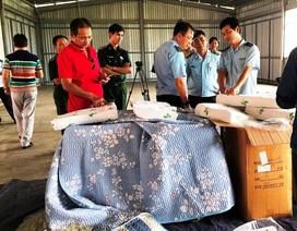 """Gia tăng hàng Trung Quốc """"đội lốt"""", cảnh báo sự """"sống còn"""" của doanh nghiệp Việt"""