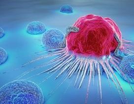 """Chuyên gia xót xa vì bệnh nhân thực dưỡng để """"bỏ đói tế bào ung thư"""""""