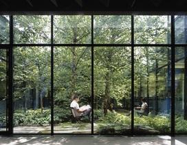 Dự án căn hộ hạng sang tại quận 7, TP. HCM sở hữu 99 khu vườn nhiệt đới trong lòng các tòa tháp