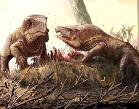 Loài rồng 250 triệu năm tuổi với cái đầu khổng lồ kì lạ ở Nga