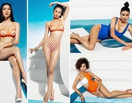 Top 45 Hoa hậu Hoàn vũ Việt Nam khoe dáng nóng bỏng với bikini