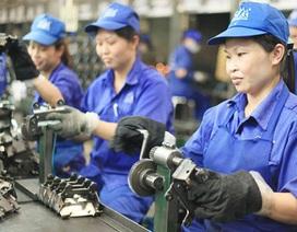 Tỷ lệ tham gia lực lượng lao động của nữ giới là 71,2 %