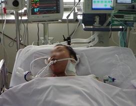 Hiếm gặp: bệnh nhân nhồi máu cơ tim cấp vì bị ong đốt