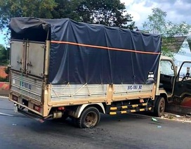 Truy đuổi hơn 20km tóm gọn tên trộm xe tải