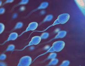 Sắp có thuốc ngừa thai cho nam giới đầu tiên trên thế giới