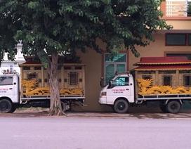 Quảng Bình: Dân ngao ngán vì trại hòm nằm... chềnh ềnh giữa phố!