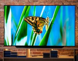 3 mẫu TV OLED đứng đầu các bảng xếp hạng thế giới nên cân nhắc mua dịp SEA Games