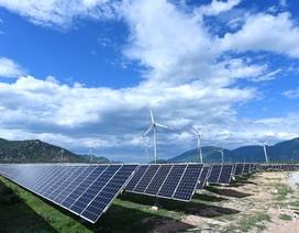 Ninh Thuận:Phát điện dự án điện gió có tuabin trên đất liền lớn nhất Việt Nam