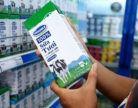 Vốn hoá Vinamilk sụt gần 2.800 tỷ đồng vì tin đồn thất thiệt về nguyên liệu sữa