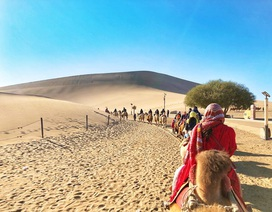 Trải nghiệm cưỡi lạc đà và khám phá miền cổ tích trên cát ở Trung Quốc