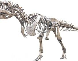 Loài khủng long 70 triệu tuổi kì lạ thay răng nhanh như cá mập