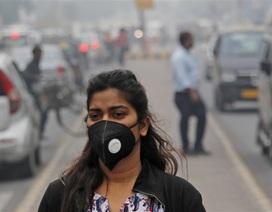 Lượng carbon dioxide trong khí quyển Trái đất đạt mức cao kỷ lục