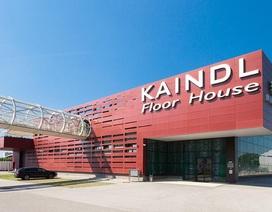 Sàn gỗ Áo ra mắt sản phẩm mới: Sàn gỗ siêu chịu nước Kaindl Aqua Pro