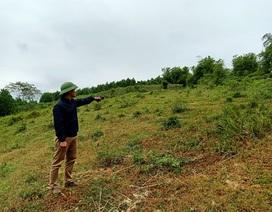 Dự án Nhà máy điện mặt trời 3 năm vẫn là bãi đất trống
