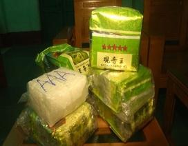 Khởi tố điều tra vụ 7 gói ma túy trôi dạt vào bờ biển