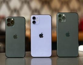 Sau 1 tháng lên kệ, iPhone 11 chính hãng giờ bán ra sao?