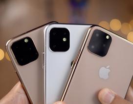 """5 dòng iPhone sẽ được Apple """"đổ bộ"""" trong năm 2020"""