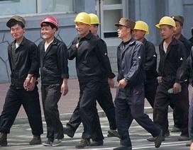 Người Triều Tiên ở Nga ồ ạt về nước
