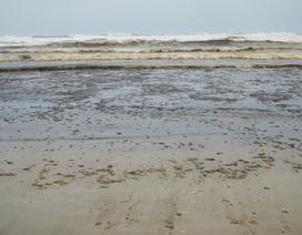 Vùng nước biển đen ngòm đang dịch chuyển trên vùng biển Dung Quất
