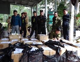 Quảng Bình: Bắt giữ 2 bố con tàng trữ gần 1 tấn pháo