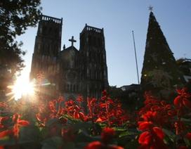 Các nhà thờ ở Hà Nội trang hoàng đón Noel 2019