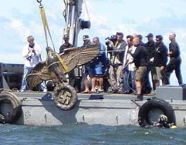 Đại bàng khổng lồ trị giá 20 triệu bảng trục vớt từ xác chiến hạm của Hitler