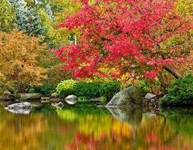 """Dự án 1,2 tỷ USD ở Quận 7 chi nghìn tỷ phát triển hàng chục vườn """"địa đàng bên sông"""""""