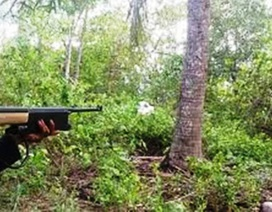 """Đi săn sóc trong rừng, bị """"đạn lạc"""" găm trúng bụng"""