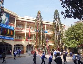 """Học sinh trường cấp 2 tại Hà Nội trang trí cây thông Noel """"siêu to khổng lồ"""""""