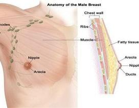 Những sai lầm phổ biến về ung thư vú