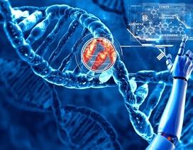 """Giải mã hệ gene- phòng bệnh ung thư từ khi còn là """"mầm mống"""""""