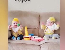 Các cặp song sinh hài hước khiến cho mẹ không thể nhịn cười