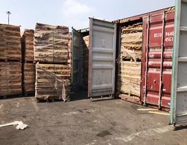 Phát hiện doanh nghiệp xuất khẩu 25 container gỗ trốn thuế gần 3 tỷ đồng