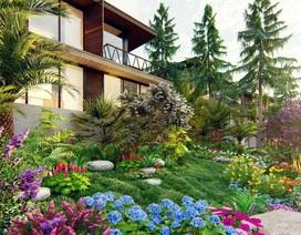 Tập đoàn Long Thành đầu tư vào bất động sản nghỉ dưỡng tại Hòa Bình