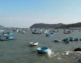Phú Yên: Cảng cá Dân Phước bị bồi lấp, ngư dân lo tàu mắc cạn