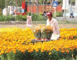TPHCM: Đất nông trường quy hoạch thành khu công nghiệp mới