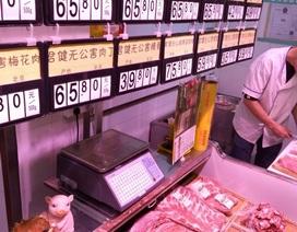 Trung Quốc: Mở tài khoản ngân hàng được tặng thịt lợn