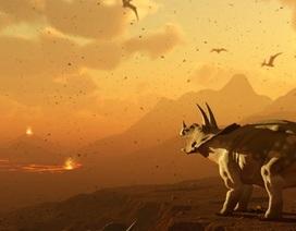 Trái Đất đã nhiễm độc thủy ngân nặng nề trước khi va chạm thiên thạch Chicxulub
