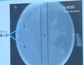 Bộ xét nghiệm phát hiện ung thư bằng giun tròn