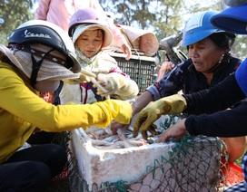 Ngư dân kiếm tiền triệu từ cá khoai những ngày cuối năm