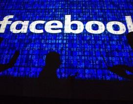 Hacker Việt Nam lấy cắp và phát tán thông tin của hàng trăm triệu người dùng Facebook