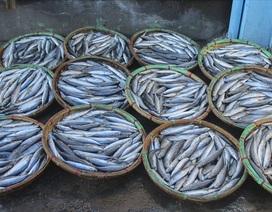 Độc đáo nghề hấp cá nuôi sống bao thế hệ