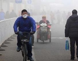 Ô nhiễm không khí liên quan đến nguy cơ trầm cảm và tự tử cao hơn
