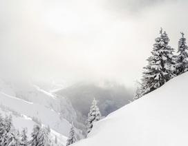 Tại sao tuyết lại có màu trắng?