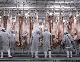 Quá thèm thịt, Trung Quốc dỡ bỏ lệnh cấm 18 năm đối với thịt bò Nhật Bản