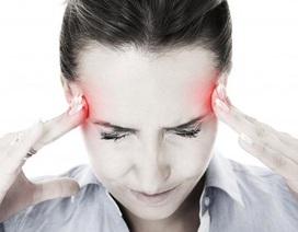 Tạo sao nên sử dụng Bách Thống Vương trong trường hợp bị đau đầu kinh niên?