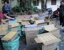 Xóa sổ ổ nhóm chuyên tiêu thụ thuốc lá ngoại nhập lậu, thu giữ 12.000 bao thuốc lá