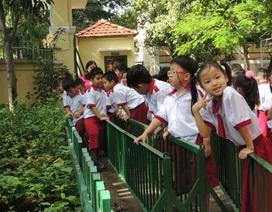 """TPHCM: Trường học """"xén"""" chương trình tham quan của học sinh"""