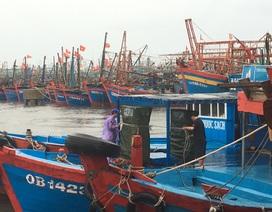 """Thiếu âu thuyền, gần 1.200 tàu cá """"chật vật"""" tìm nơi neo đậu"""