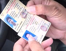 CSGT dùng điện thoại thông minh phát hiện ngay giấy phép lái xe giả